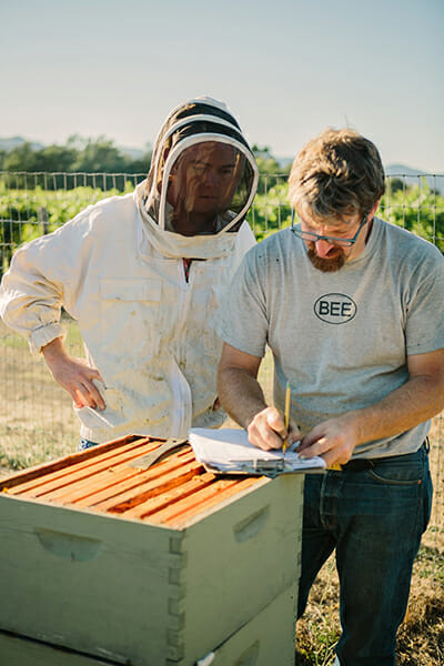 The Napa Valley Bee Company was one of the initial groups that was crowdfunded by Barnraiser. / Courtesy Barnraiser.
