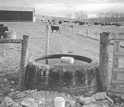 Oversized tires from old farm equipment are made into water troughs.