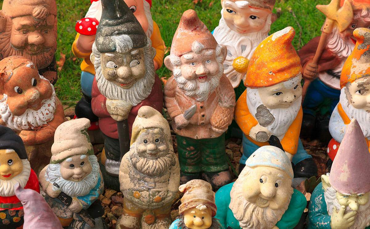 Gnome In Garden: Garden Gnomes Have Come A Lawn Way