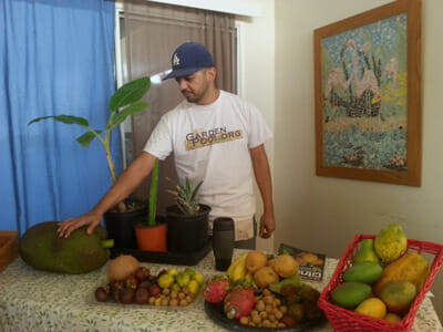 How to grow tropical fruit trees, another free class provided by Garden Pool. / Courtesy Garden Pool