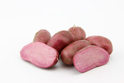 Red Emmalie potatoes, another breed that will be available at the pop-up store.