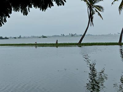 Flooded farmland.