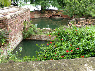 A 250-year-old stone well Gopal's family property is also flooded with backwater.
