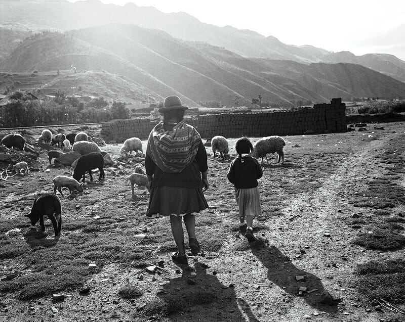 A mother and daughter walking their flock of sheep in the Urubamba Valley in the Andes of Peru, close to the capital of Cusco.