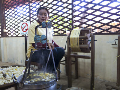 Traditional silkworm farming techniques remain largely untouched by modern methods.