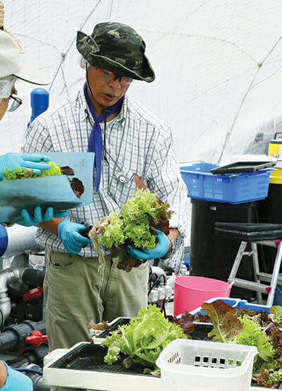 An employee works beside a culture pool for lettuce at Granpa Farm in Yokohama. / Courtesy Haruyoshi Yamaguchi.