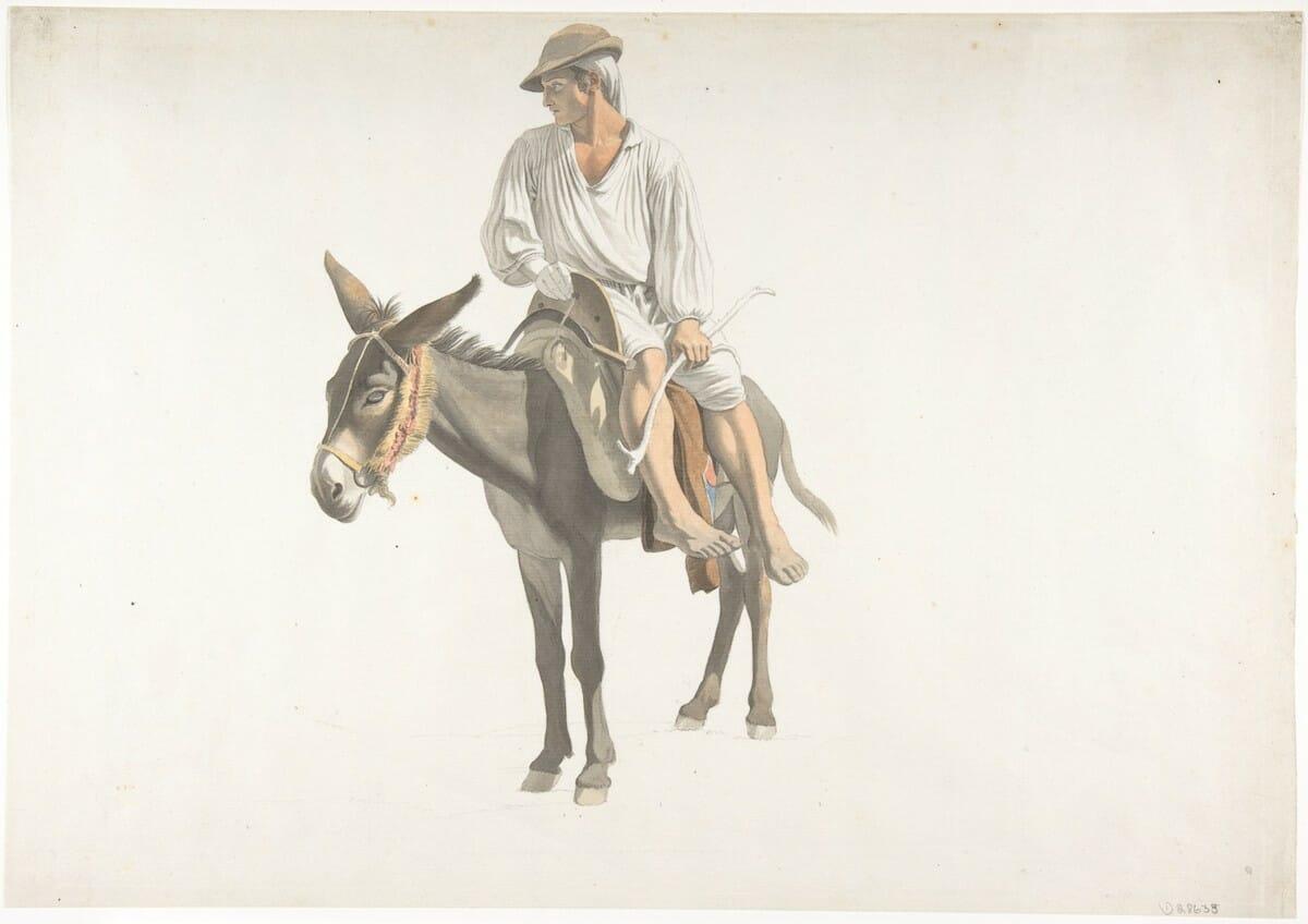 donkey6.peasant