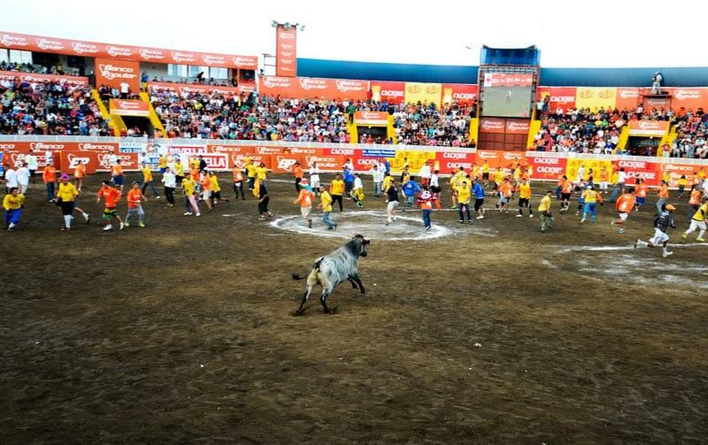 bullfighting_3