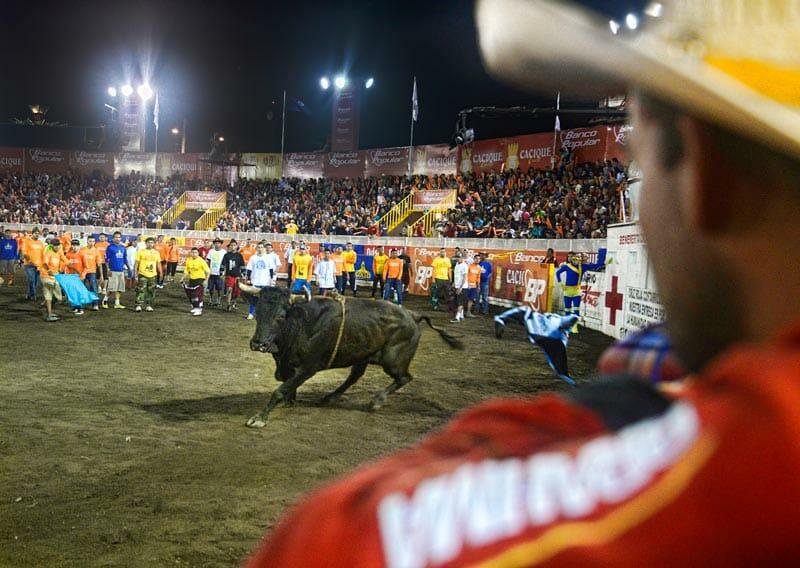 bullfighting_4