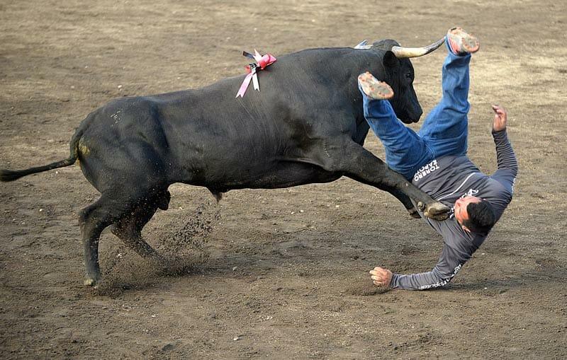 bullfighting_6