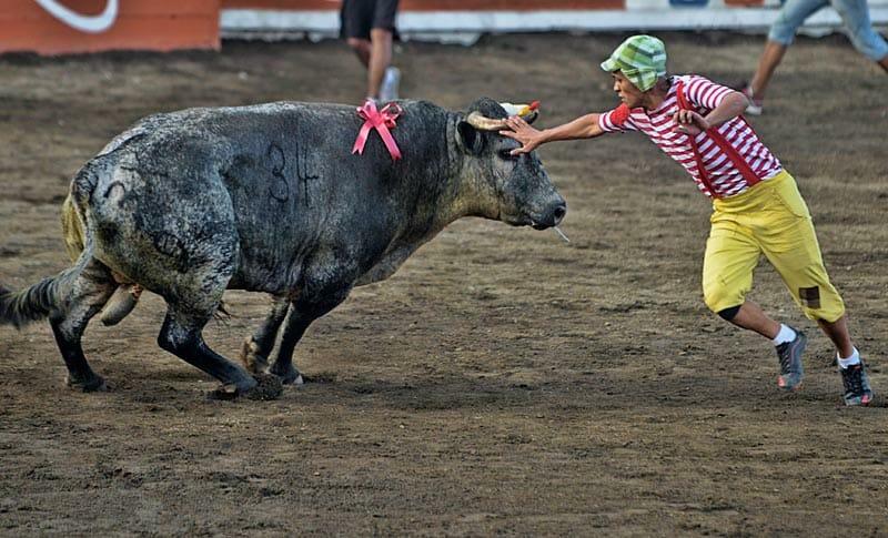 bullfighting_9