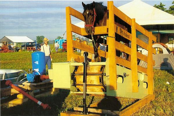Athens Horse Treadmill from Alpha Ag.