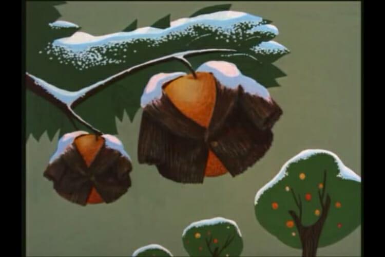orange_fir