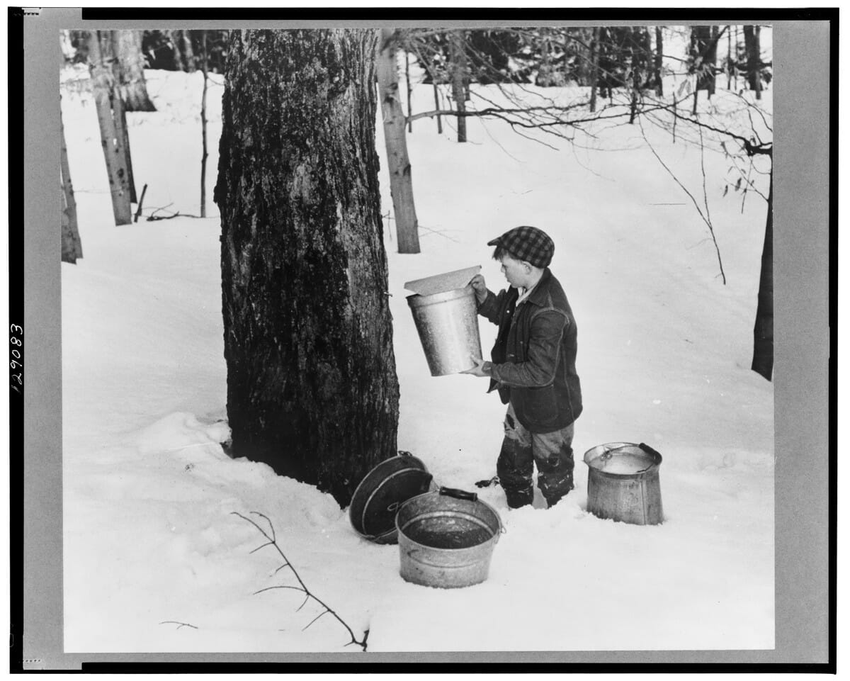 seven vintage shots of maple sugaring  modern farmer