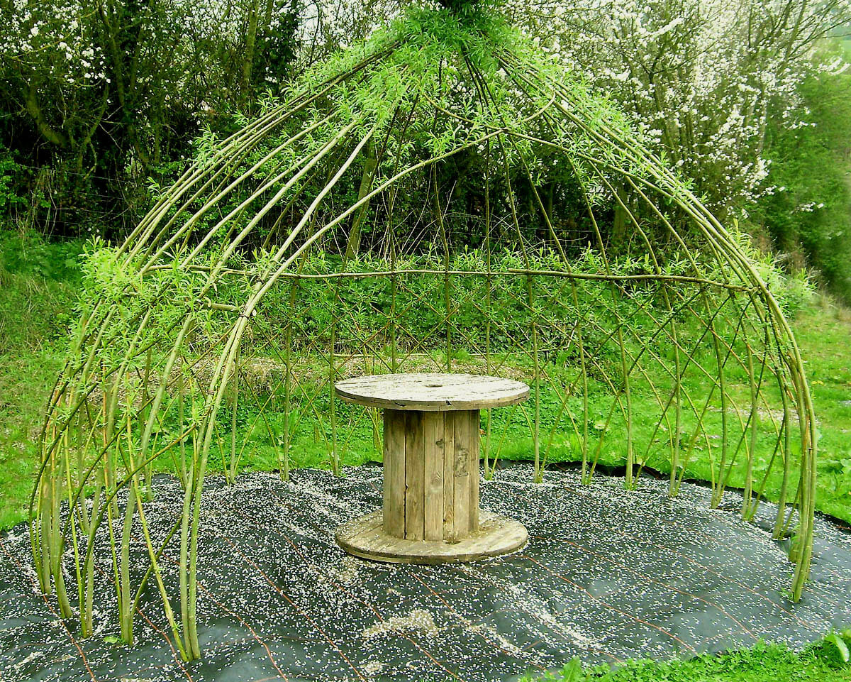 How To Build A Living Summer Shade Structure Modern Farmer