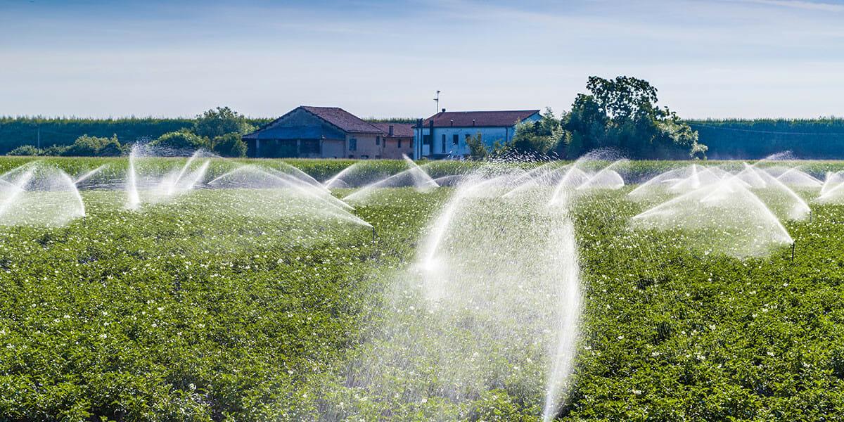 Irrigation 101 - Modern Farmer