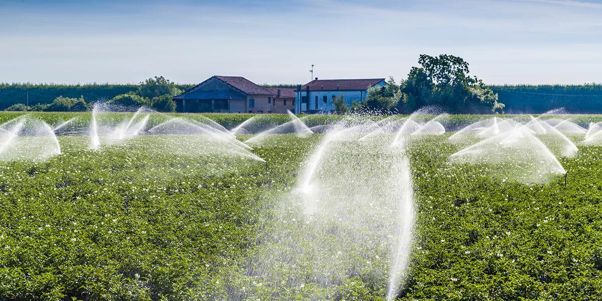Irrigation 101 Modern Farmer