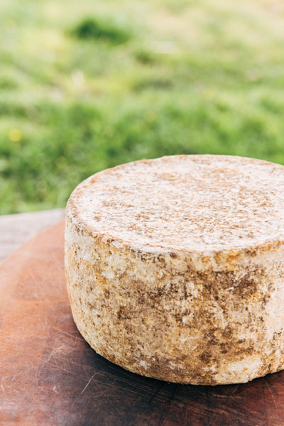 The farmer's tomme-style cheese is aged 6 months before hitting the shelves at his new Seattle store, Kurt Farm Shop.
