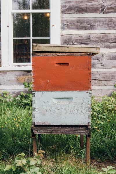 http://modernfarmer.com/wp-content/uploads/2015/08/kurtwood-farms-kurt-beehive.jpg