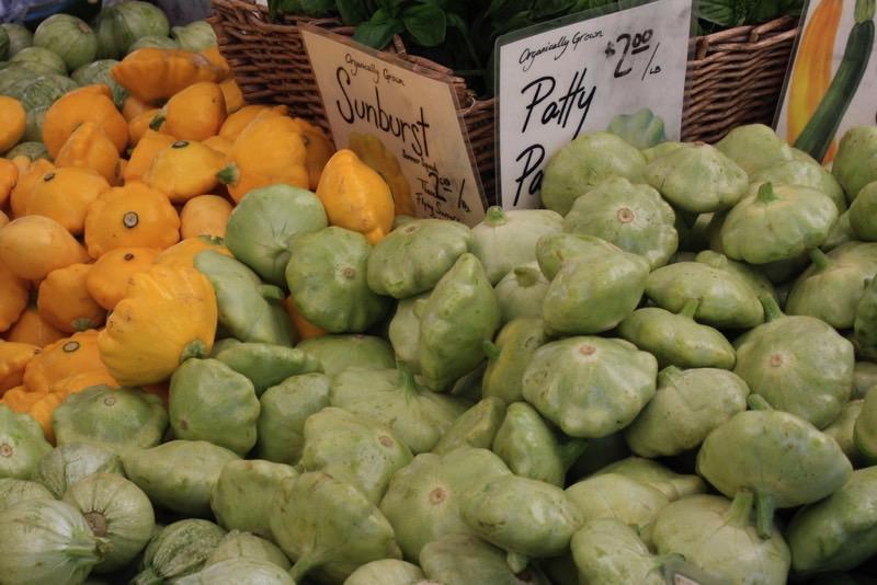 summer squash varieties