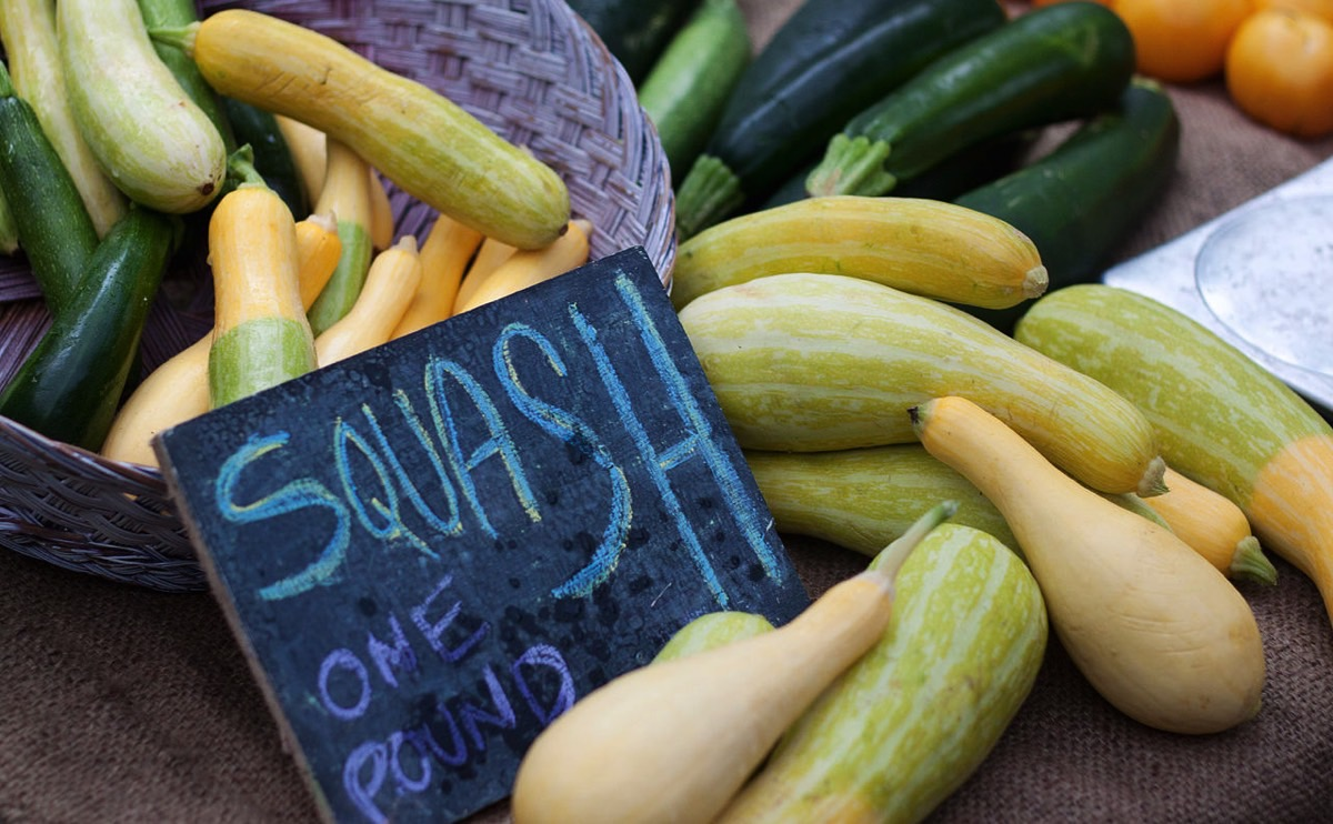 10 Summer Squash Varieties: Some You Know, Some You Don't ...