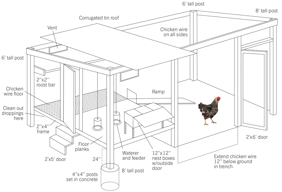 How to Build a Chicken Coop - Modern Farmer