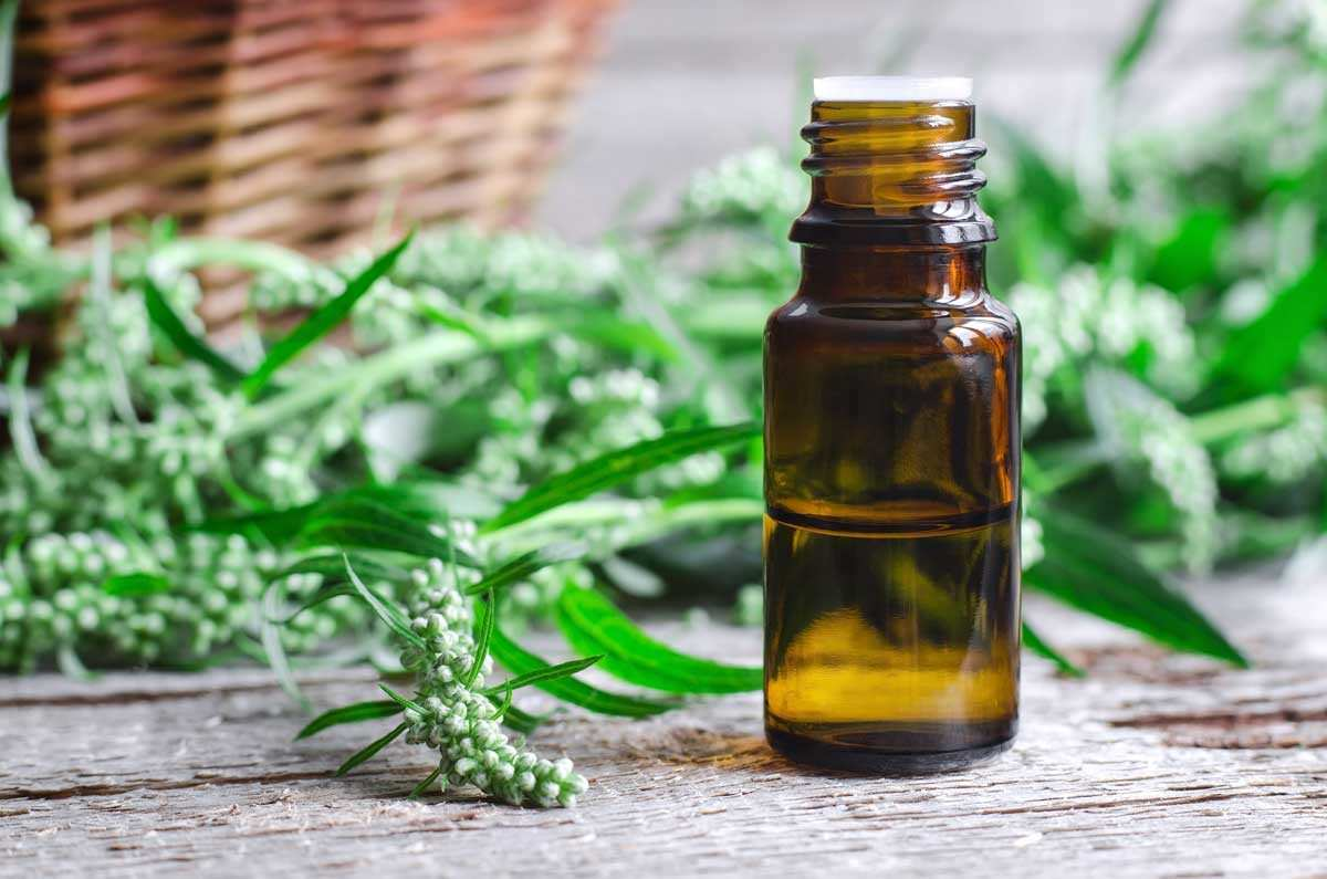How to Make a Medicinal Tincture, Just in Time for Cold