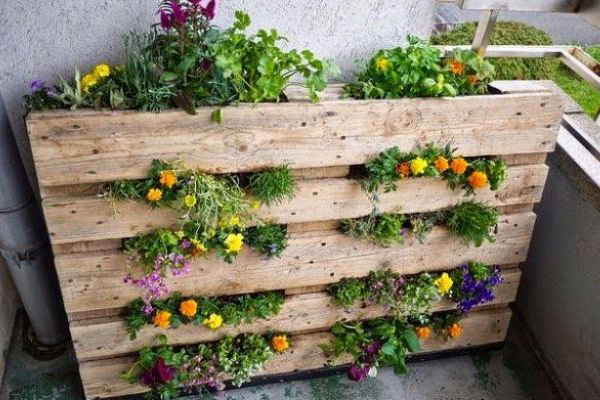 recycled wooden pallet planter