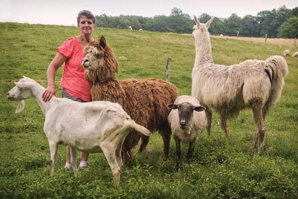 kathy evans farmer