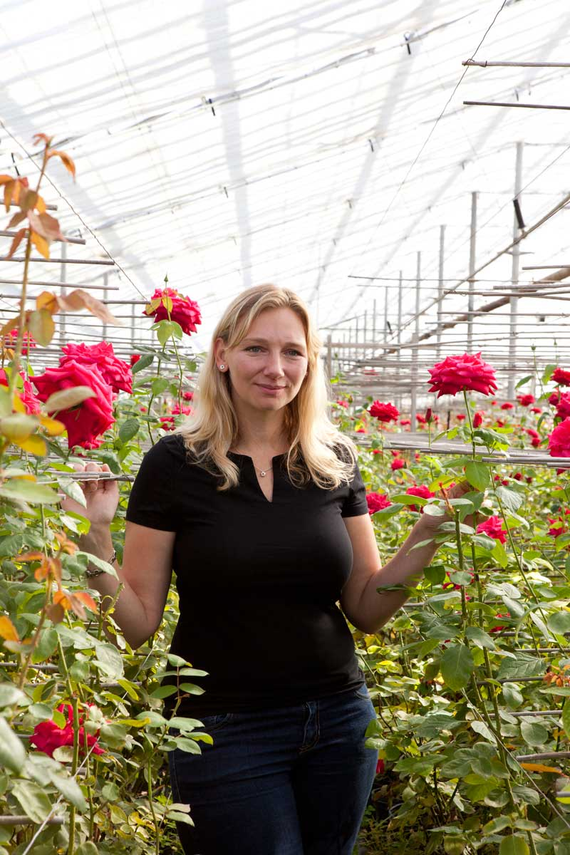 michelle ouimette roses for autism