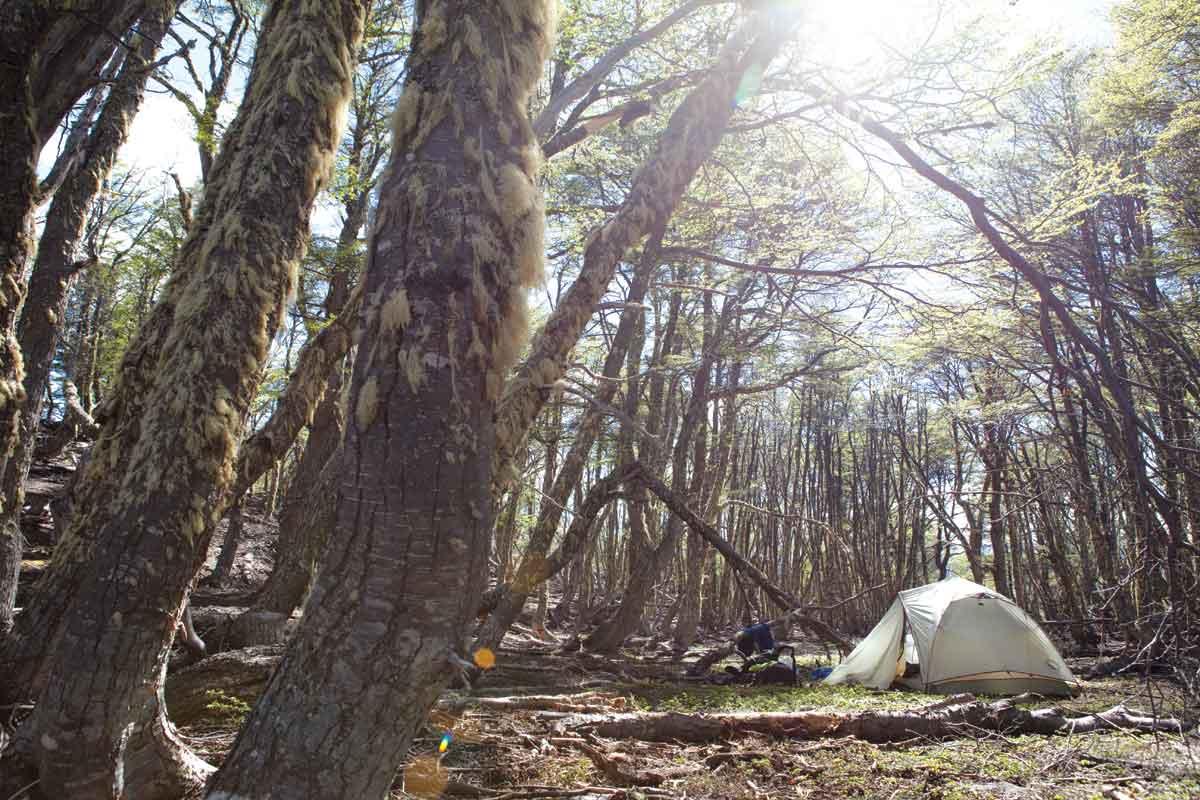 volunteer camp patagonia park