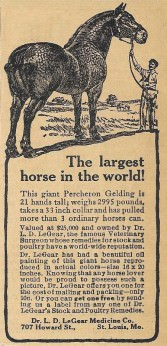 1915 DR. LeGEAR VET LARGEST HORSE IN WORLD PERCHERON ST. LOUIS MISSOURI AD