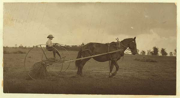 child-labor-1915