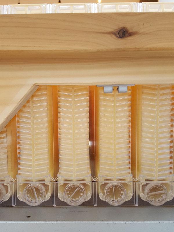 flow-hive-detail