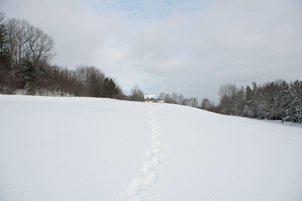 urban-exodus-house-snow