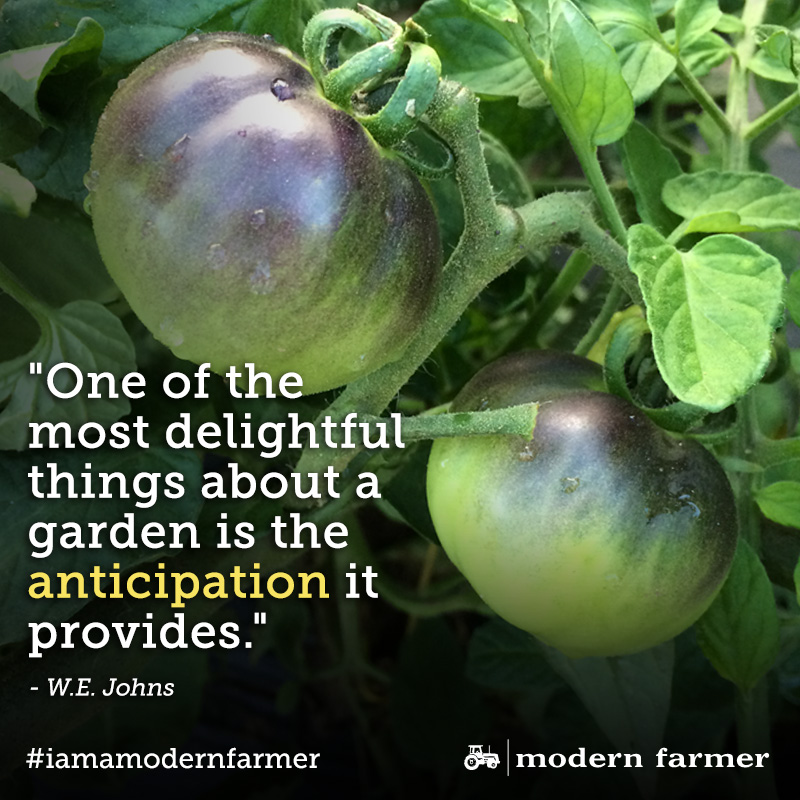 10 Quotes Thatll Help You Fall Back In Love With Farming Modern