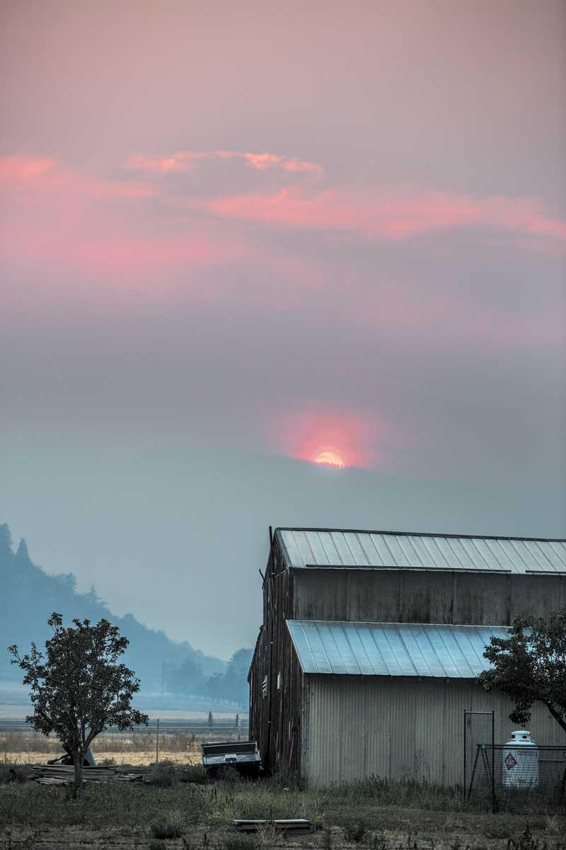 http://modernfarmer.com/wp-content/uploads/2016/03/belcampo-sunset.jpg