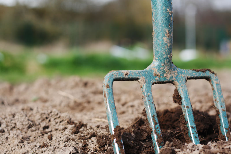 double digging how to build a better veggie bed modern farmer