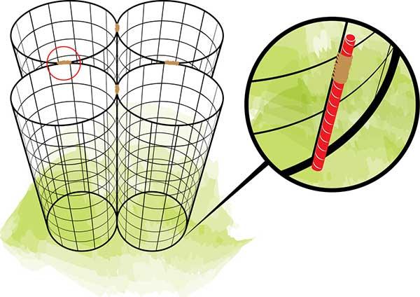 tomato cage 3