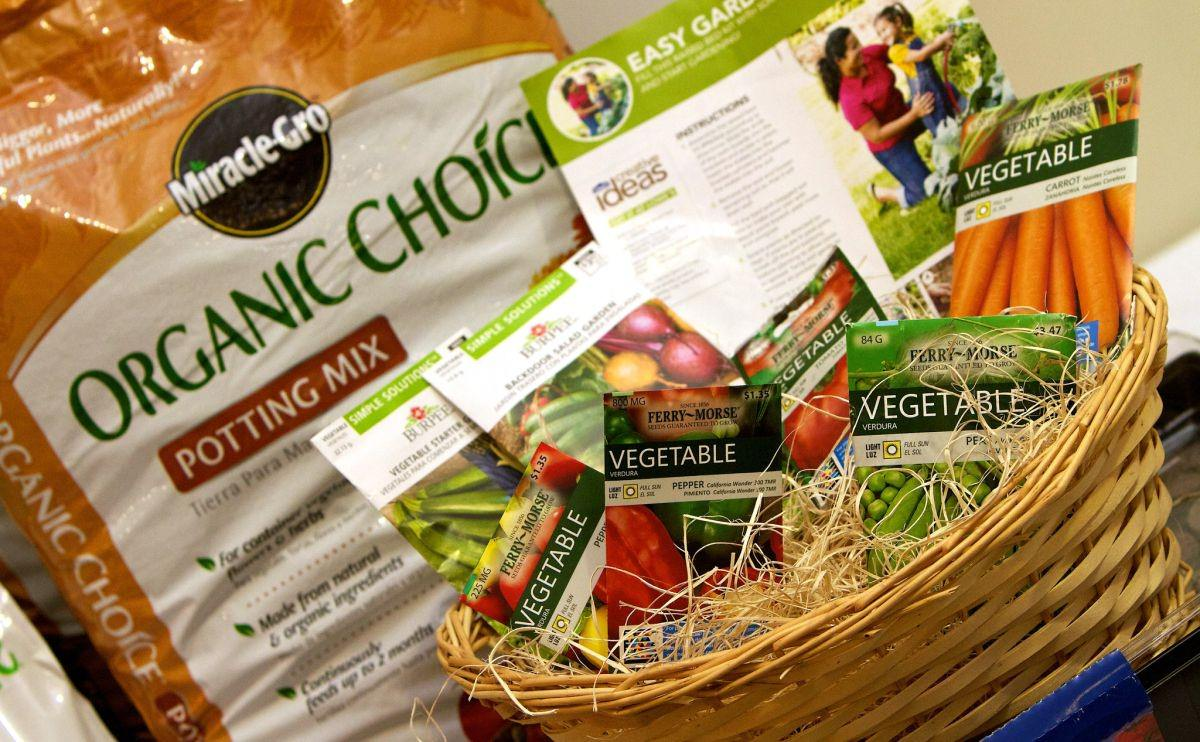 Miracle-Gro To Move Away From Likely Bee-Killing Pesticides