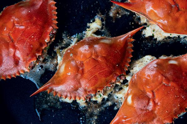 stuffed crabs in pan