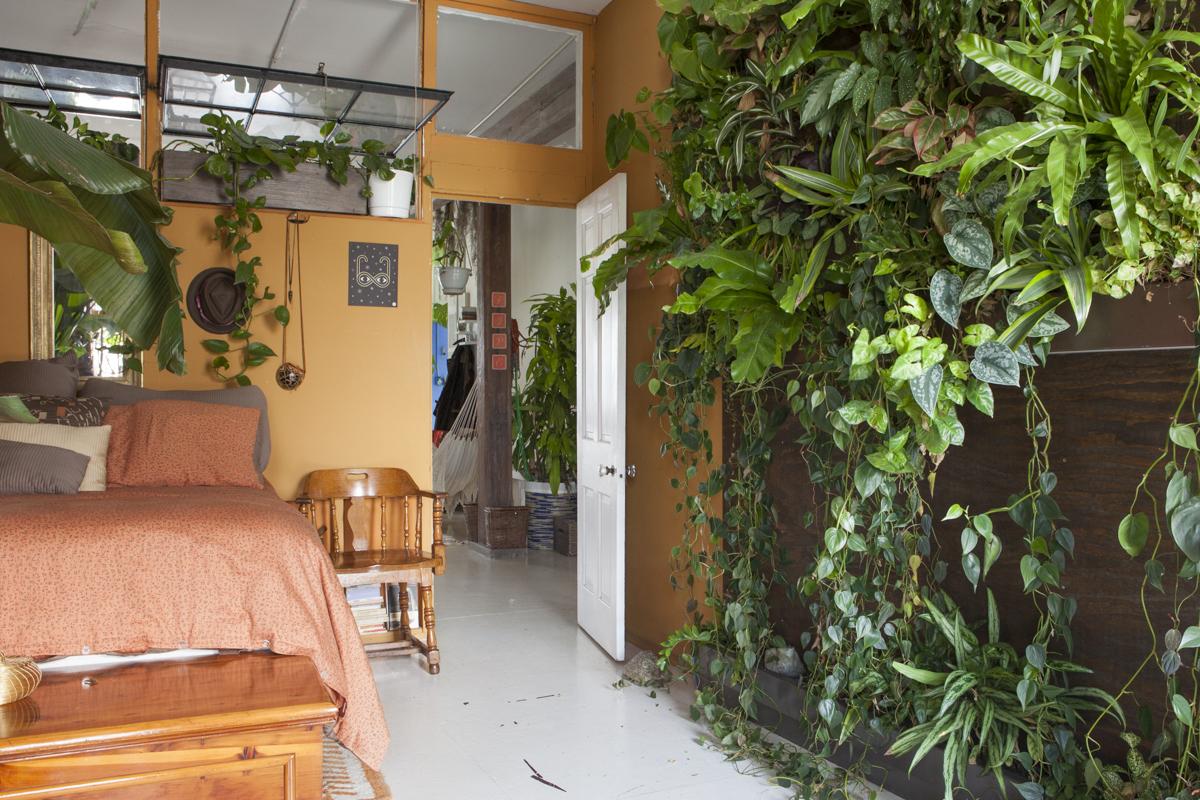 Meet a Woman Who Keeps 500 Plants in Her Brooklyn ...
