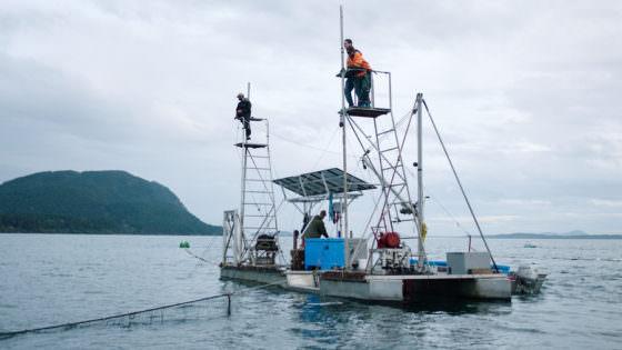 rsz_film_still_-_patagonia_provisions__unbroken_ground_-_lummi_island_wild_fishery