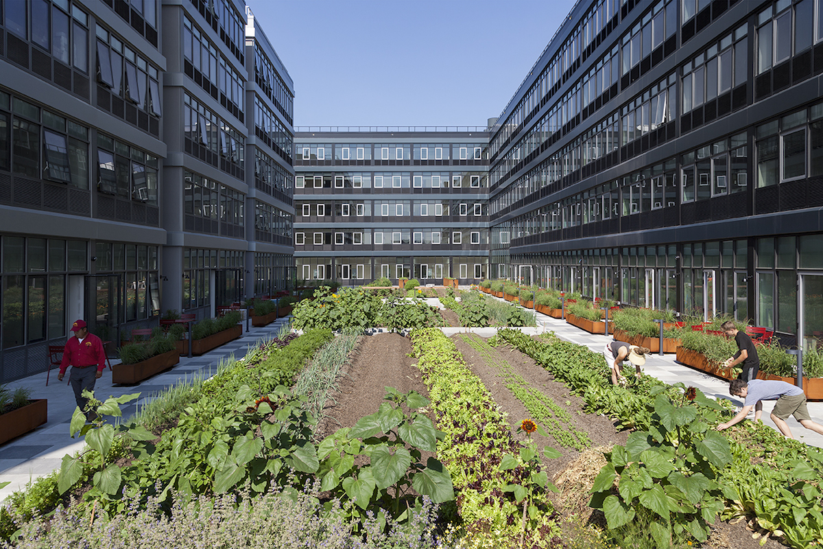 Meet the Woman Who Runs NYC's First Commercial Farm in a Residential Development