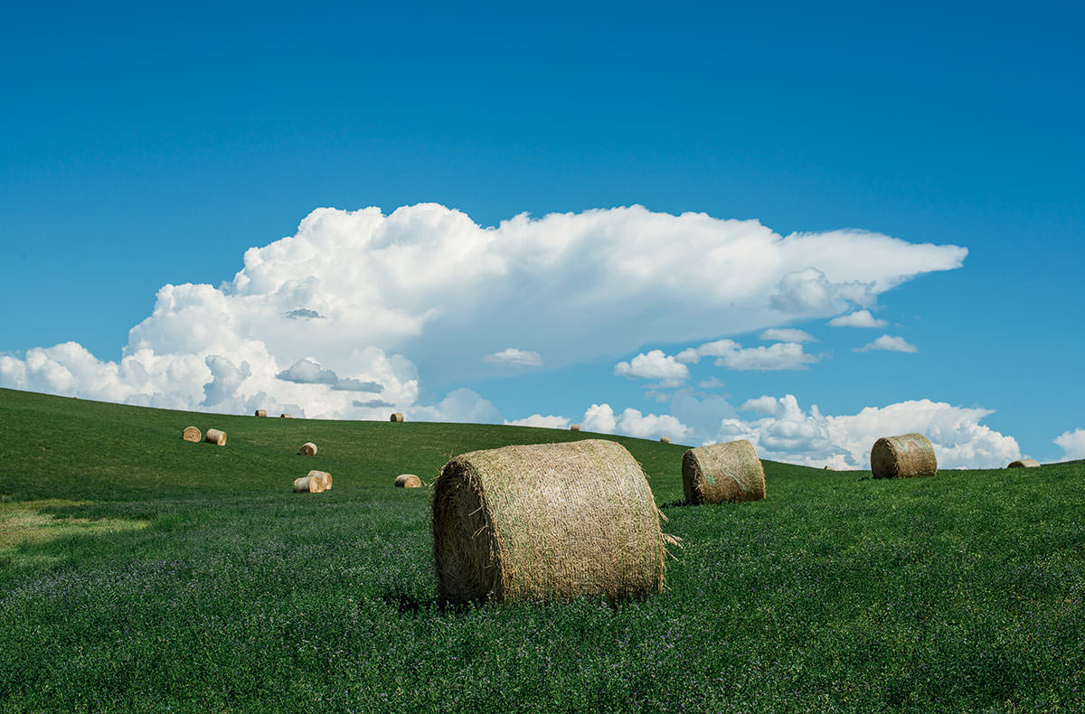 colorado-water-hay-bales