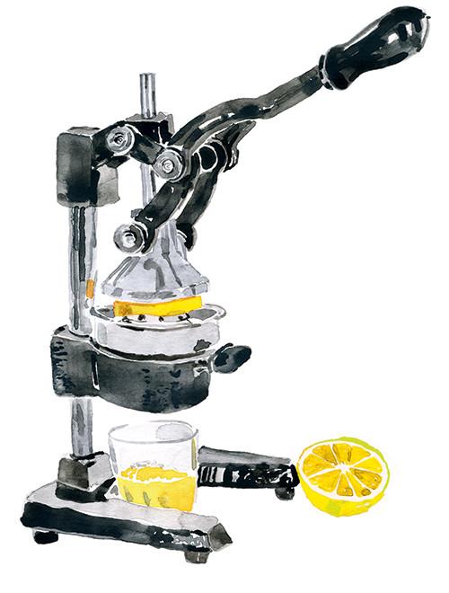 gg-juicer-lemon_cmyk