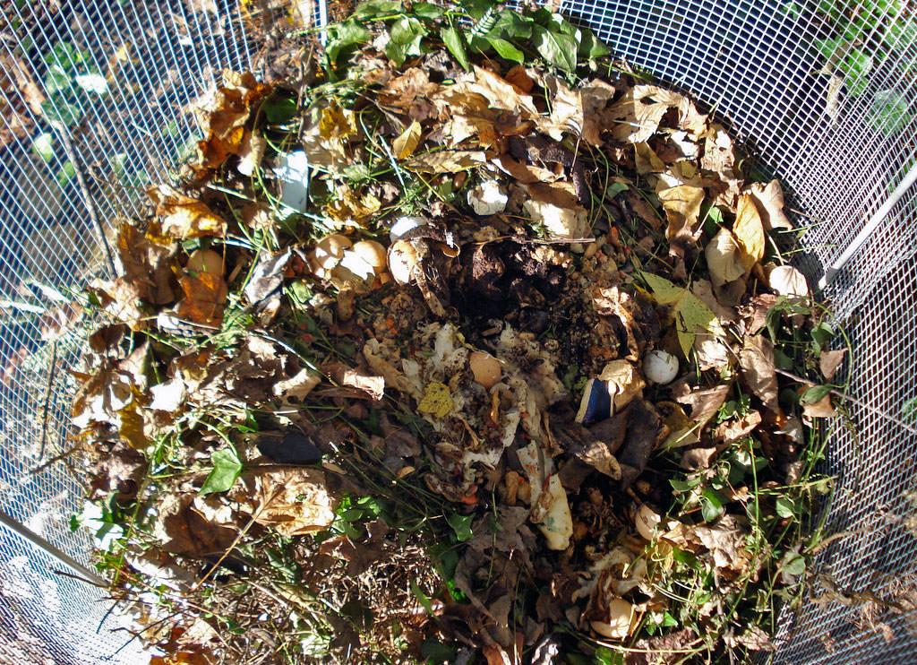 175ec41affd9d 7 Secrets to Perfect Compost - Modern Farmer