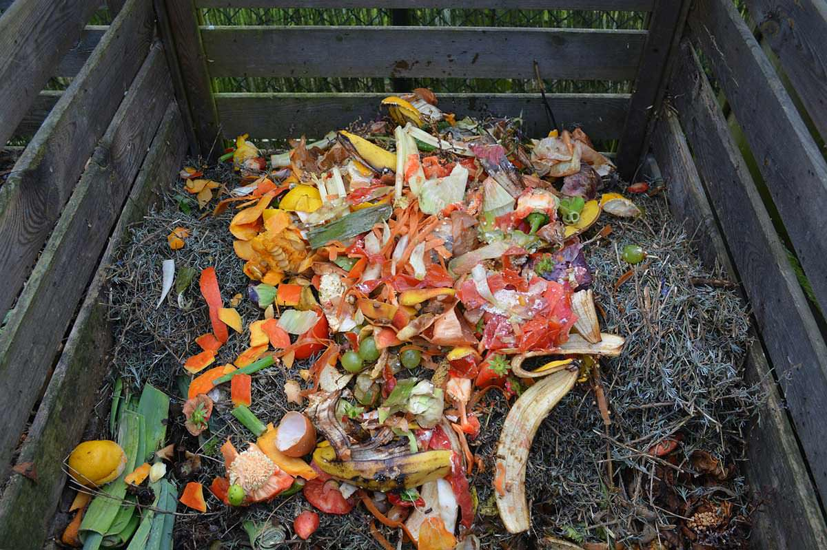 a place to rot the modern farmer guide to compost bins modern farmer