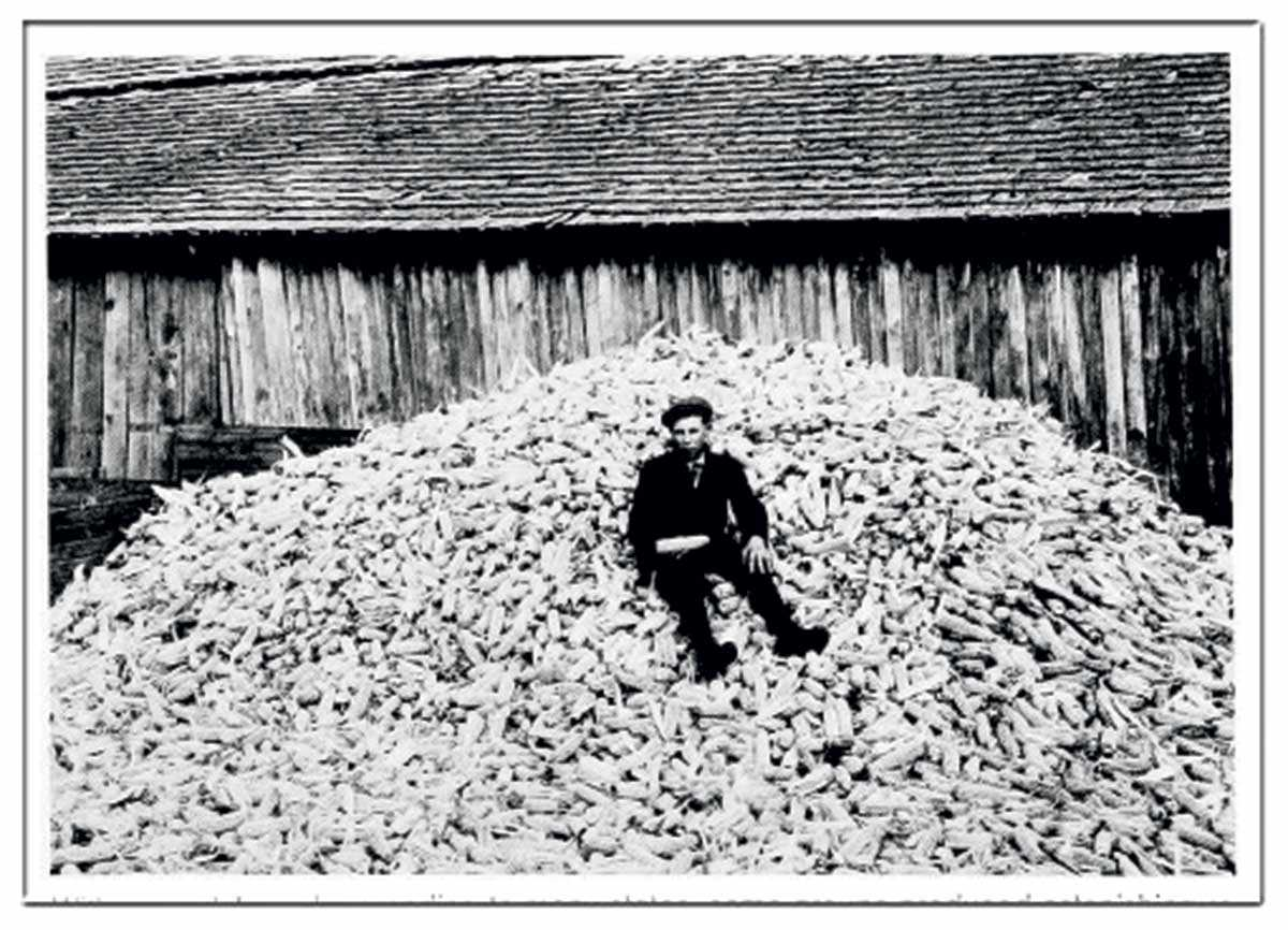 1912 Marius Malgren, who joined one of the many young-farmer clubs that would eventually coalesce into 4-H, poses atop the 209 bushels of corn he coaxed from a single acre in Hickory, VA - at a time when the national per-acre yield averaged only 29 bushels.