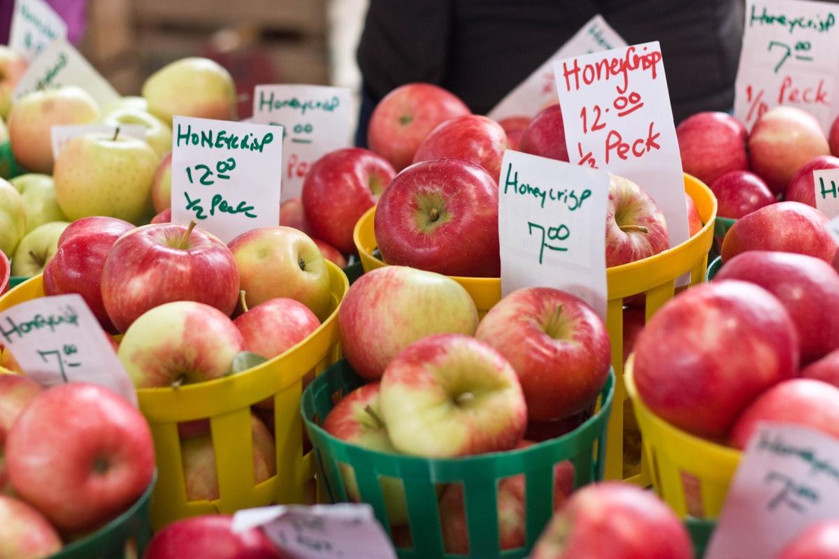 America S New Favorite Apple The Honeycrisp Has A Problem Modern Farmer